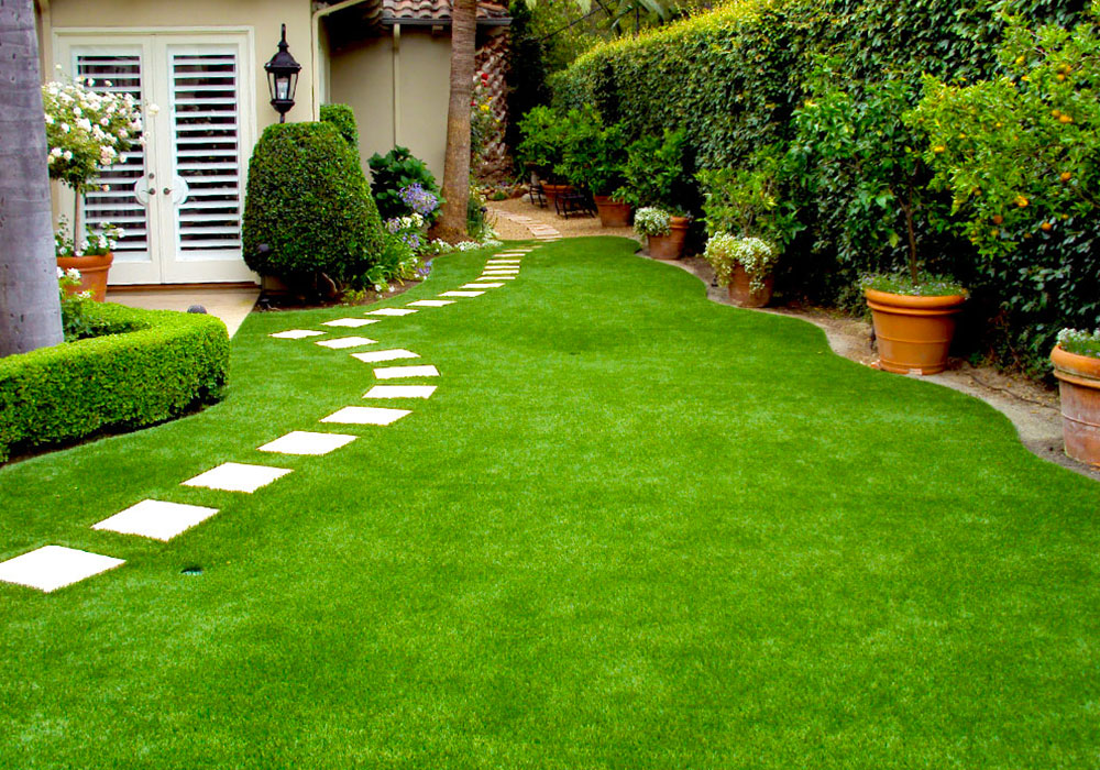 SoClean Gardening Services Garden Clean Up